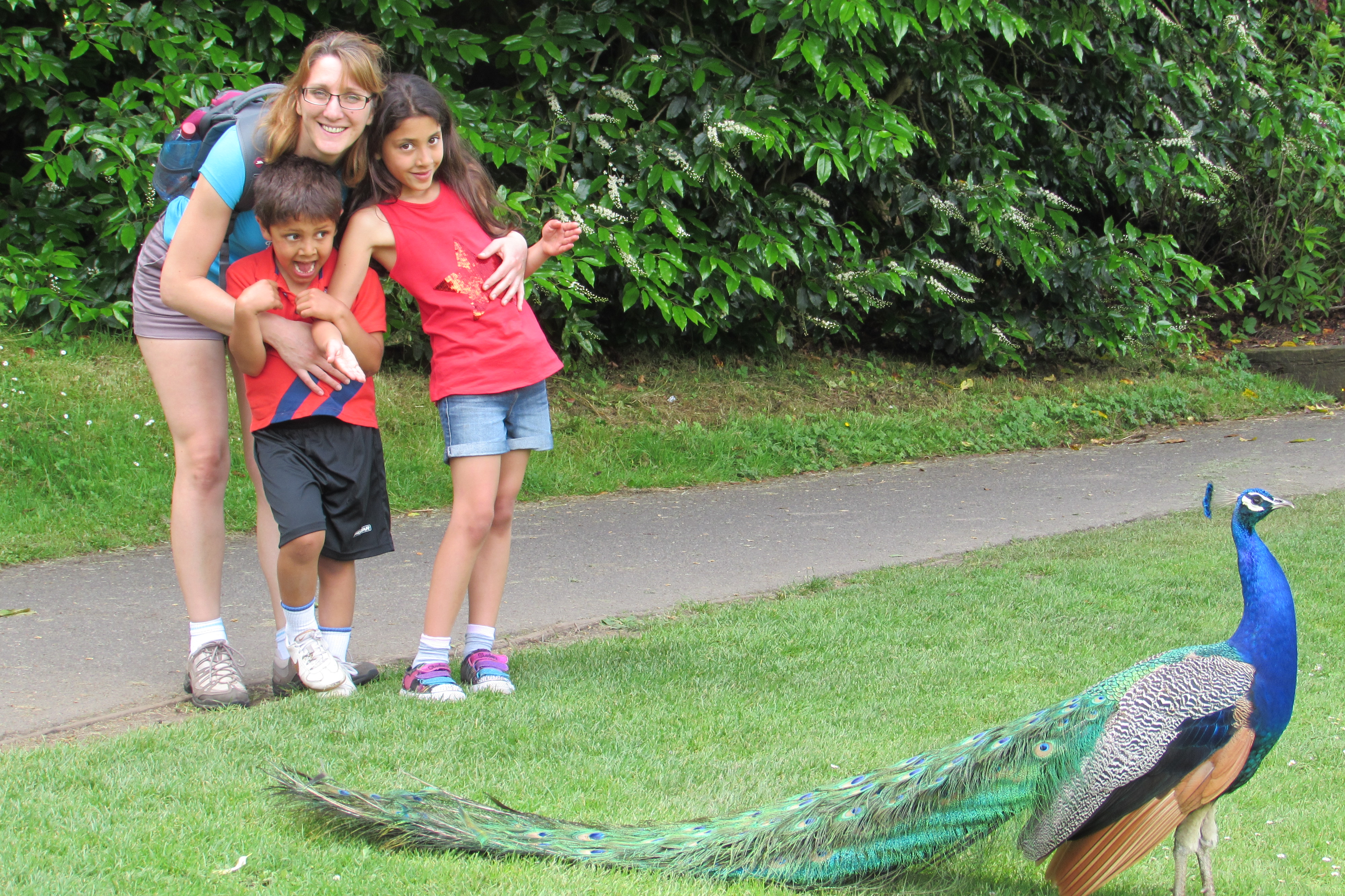 Sylvie, Leo, Alizee, and Peacock at Leeds Castle