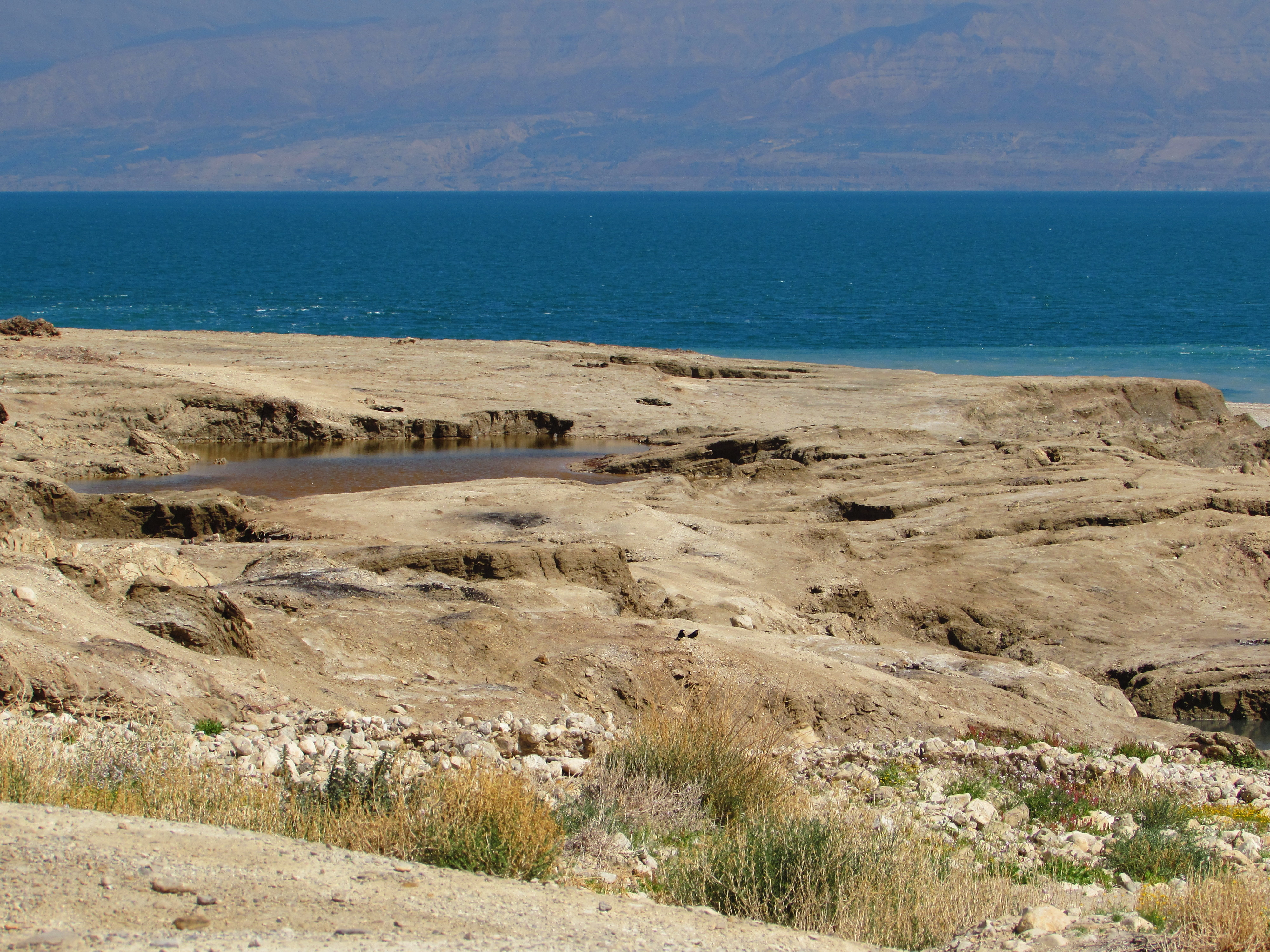 A hot spring near the Dead Sea, which is the lowest place geographically on earth
